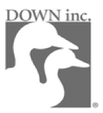 Logo Down inc