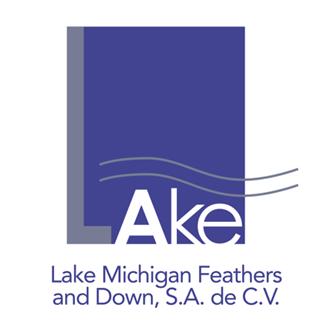 Lake Michigan logo